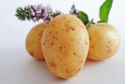 Πιστοποιητικό Πατάτα